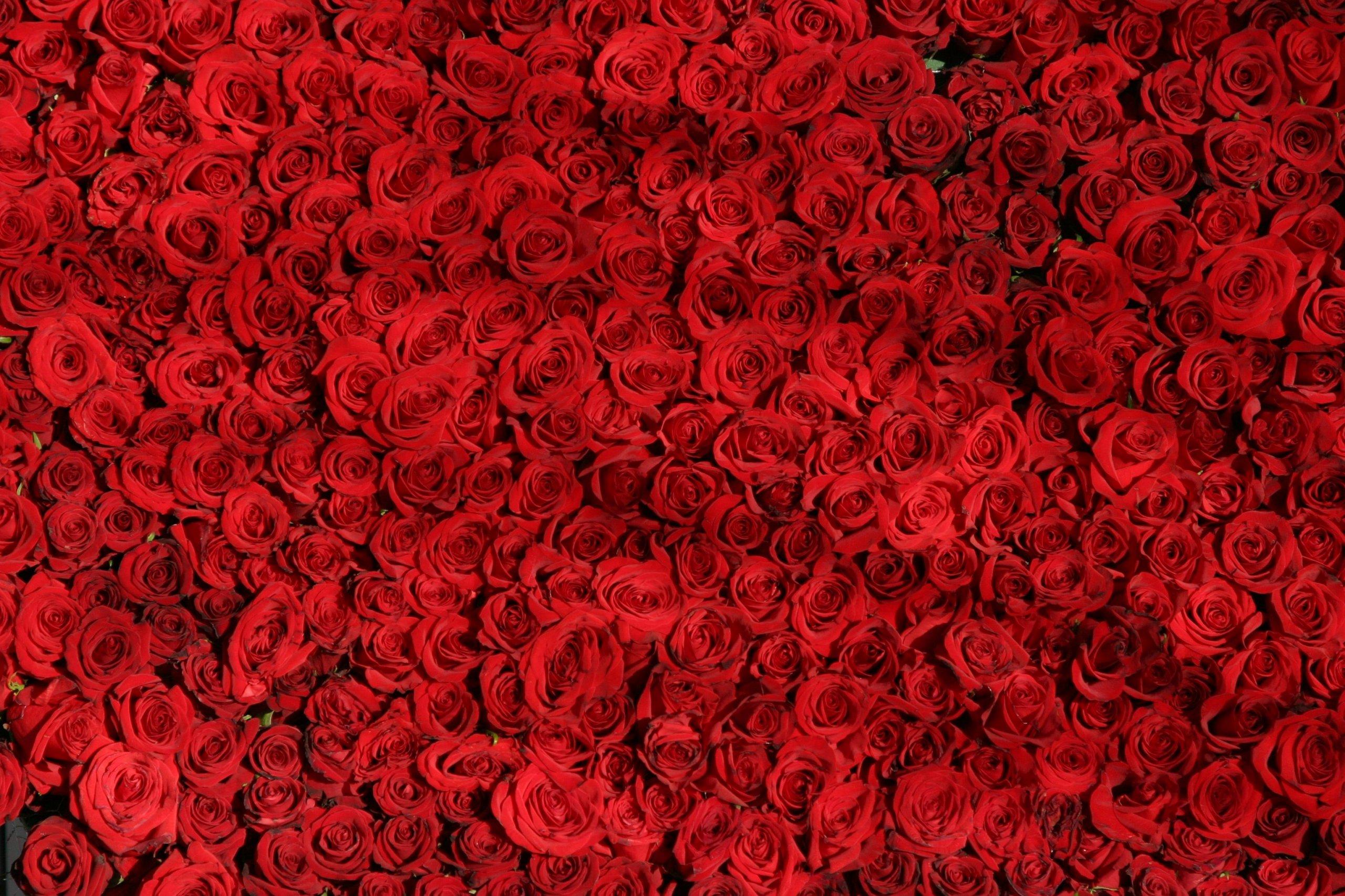 rosacea dieper dan de huid
