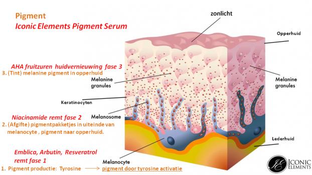 targeted Pigment serum productie in de huid pigmentvlekken - Iconic Elements